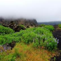 Heimæy mit Blick auf den mit Nebel bedeckten Heimaklettur