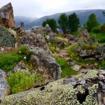 Impression Botanischer Garten Tromsø