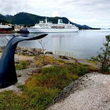 MS Deutschland und Walflosse in Stokmarknes